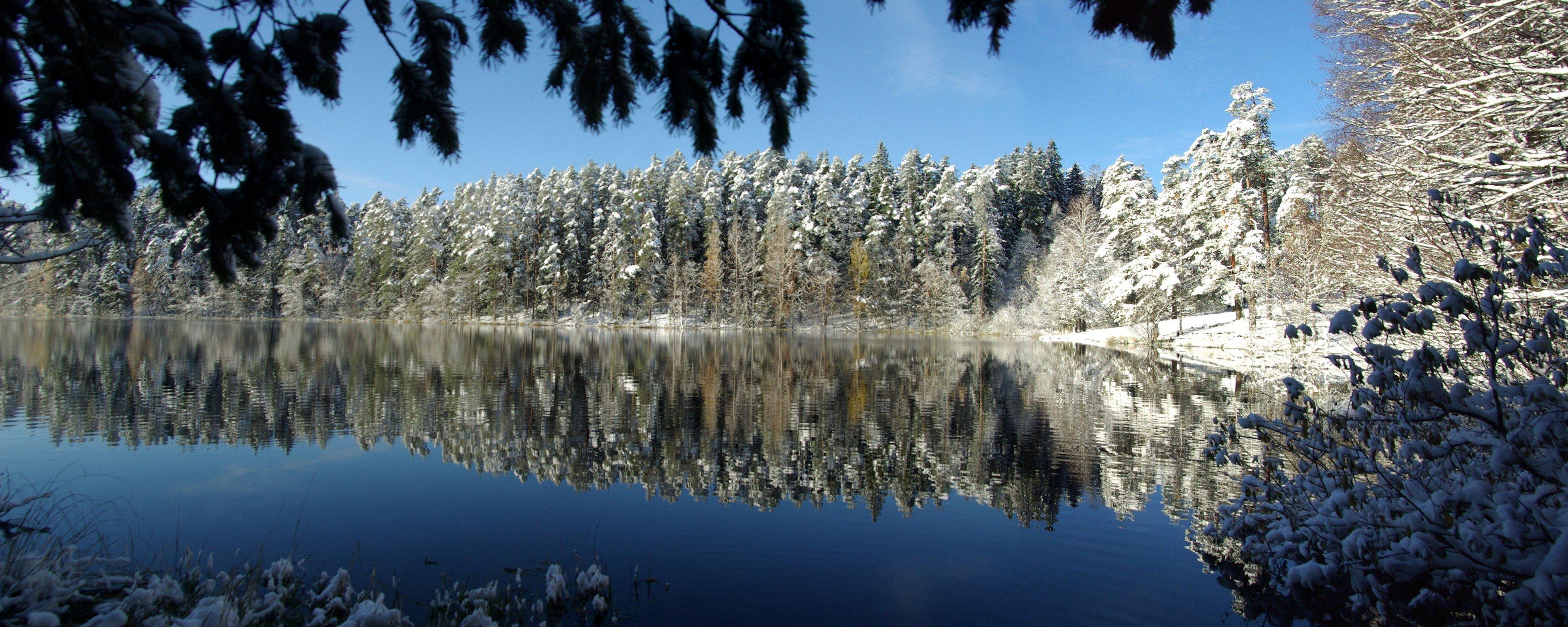 Vaade talvisele Viitna järvele